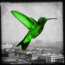 Humming in the city - green