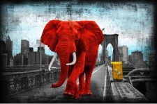 Tripping on Brooklyn bridge - red